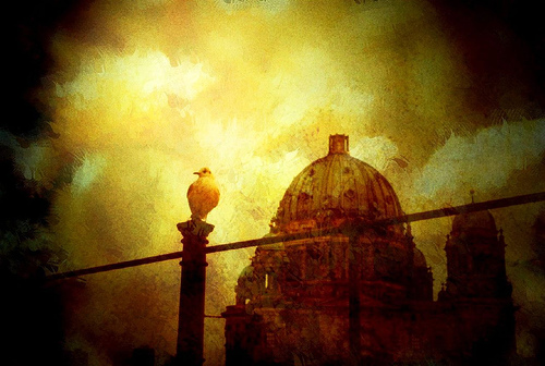 Seagull sits outside a sepia cathedral.