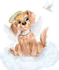 dog angel