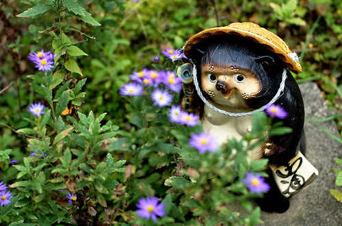 A sinister-looking Tanuki in a serene-looking garden, or vice versa.