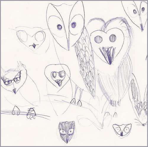 A rough sketch of owls.