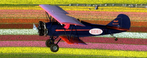 A vivid plane zooms over a lurid crop.